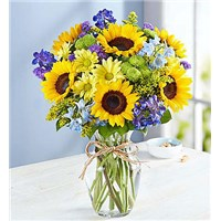 sunflowers-fields-of-europe-summer-arrangement-by-flowerama