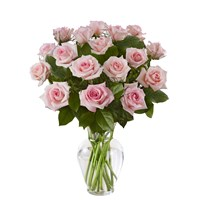 90109_12_rose_pink_only_greens