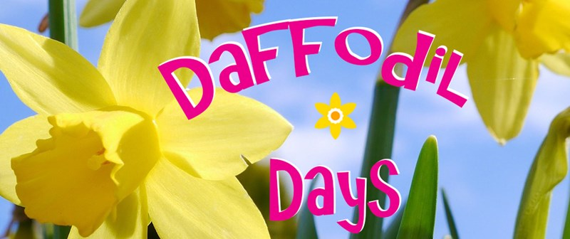 web_banner_for_daffodil_days