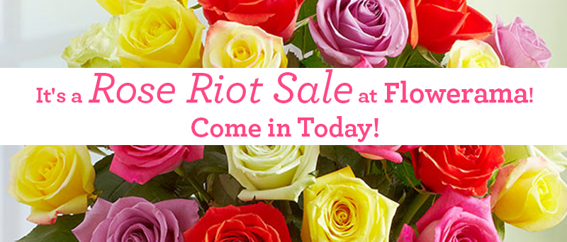 rose riot sale web banner
